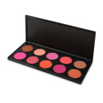 BH 6100-002 Professional Blush set 1/10