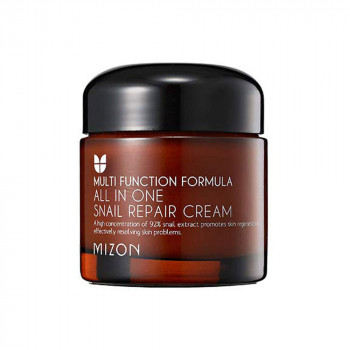 Mizon All In One Snail Repair Cream 75 ml